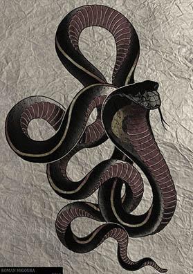 Тату эскиз красная кобра