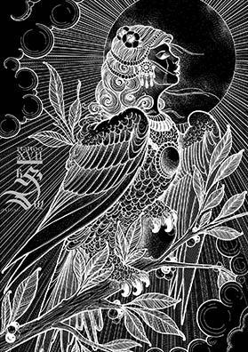 Эскиз тату птица Сирин