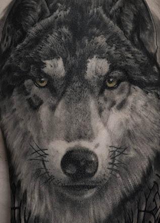 Тату реализм волк